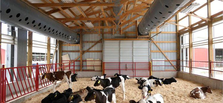 csm_Agriculture_LA_VST_USA2_7fd7431a6b